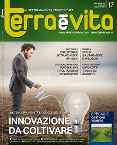 Terra e Vita n.17